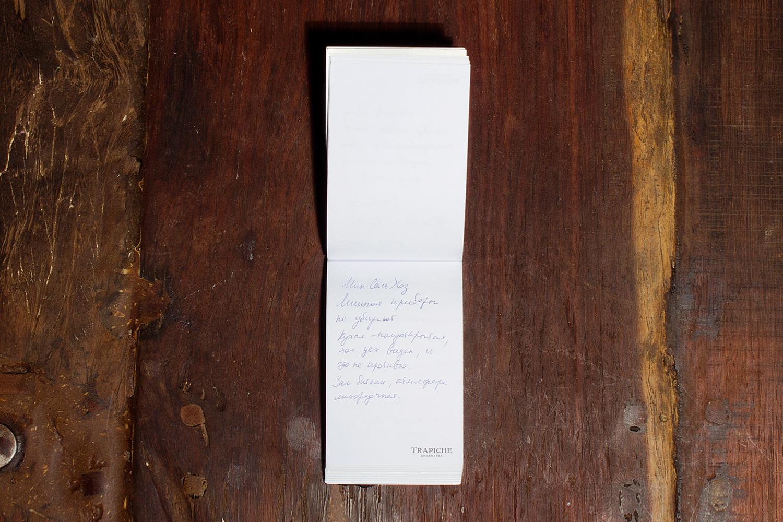 Записная книжка Александра Ильина