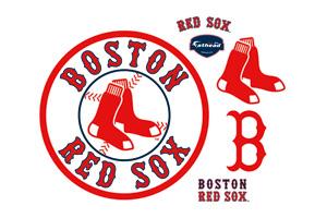 Прошлый год был примечателен для Кинга не только выходом его романа «Доктор Сон» — но и тем, что его любимая бейсбольная команда Boston Red Sox победила и в Американской лиге, и в мировой серии