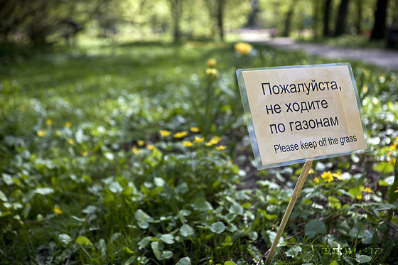Инспекция парков аптекарский огород