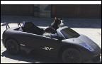 Канадский диджей купил Lamborghini для кота
