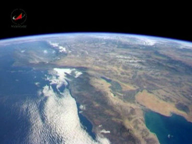 За 40 лет биоресурсы Земли сократились на треть