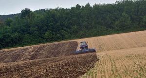 Россия идет на зерновой рекорд