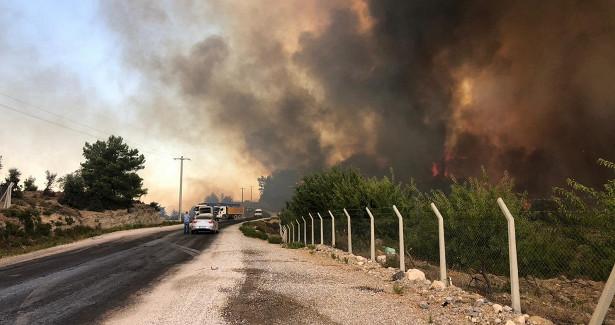 ВГреции жителей четырех поселений эвакуировали из-залесных пожаров