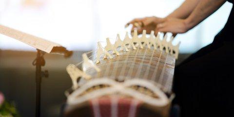 TheAnimals нагидравлофоне: 5самых необычных музыкальных инструментов