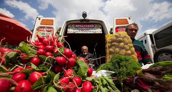 Россия собрала рекордный урожай овощей