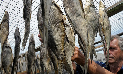 Рыбу отрежут от иностранцев