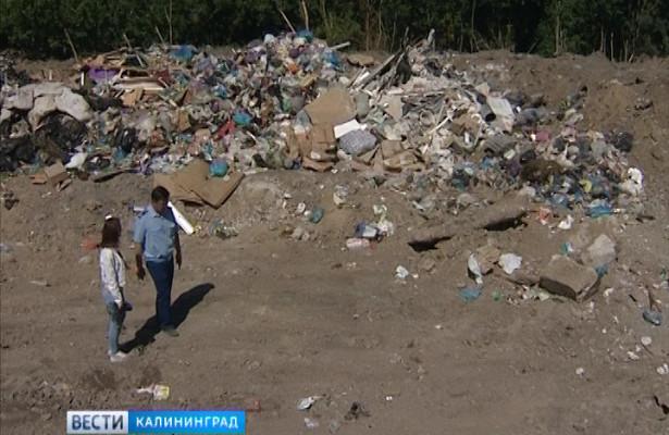 ВКалининграде нашли незаконную свалку