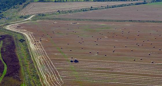 Жители четырех регионов РФ пока не подали ни одной заявки на «дальневосточный гектар»