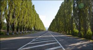 В России построено 300 км новых автотрасс за год