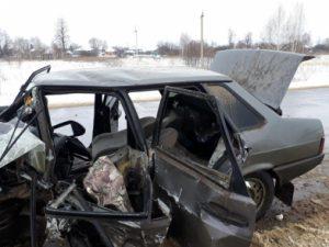 ВСасовском районе произошло смертельное ДТП