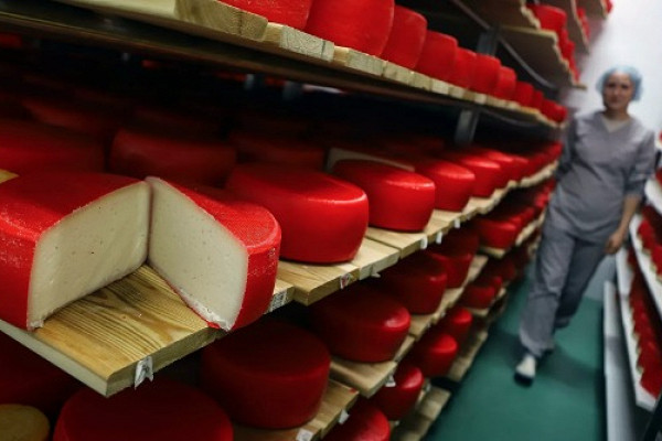 Правительство установило сроки начала маркировки молочной продукции