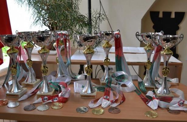 Шахматисты изЗабайкалья завоевали золотые медали навсероссийском чемпионате