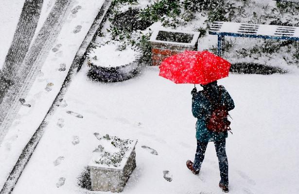 Москвичей призвали небояться циклона «Таня»