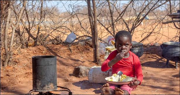 Мадагаскару грозит голод из-засильнейшей запоследние 40летзасухи