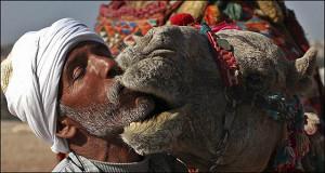 Египет— за укрепление рубля