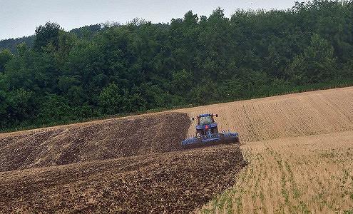 Медведев ждет рекордного урожая зерна