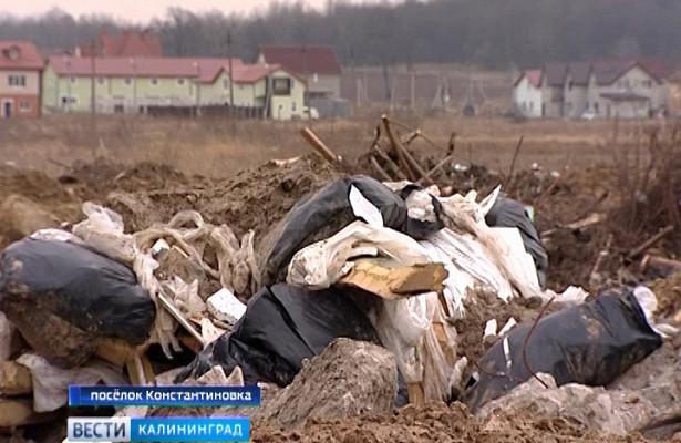 Нелегальную свалку всамом центре посёлка Константиновка ужепроверяют надзорные органы