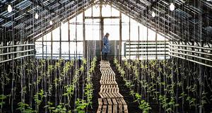 Аграрии сохранят полис