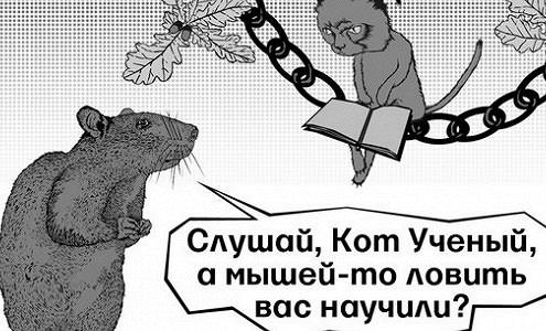 В мире и в России в моду входит образование «анти-МВА»