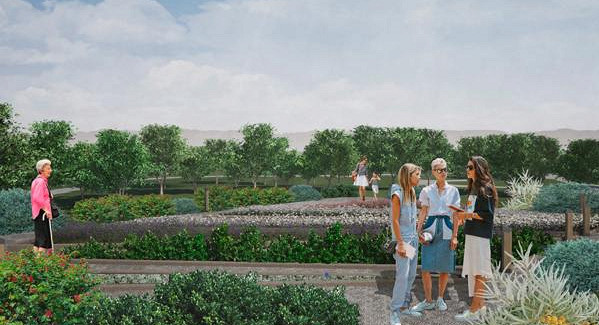 ВТобольске восстанавливают двухсотлетний Аптекарский сад: детали проекта