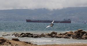 Между Сочи и Крымом появится авиационное и круизное сообщение