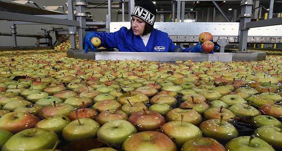 В спор садоводов и производителей соков попросили вмешаться ФАС
