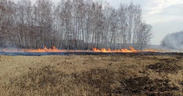 ВВоронежской области инвентаризируют пожароопасные участки