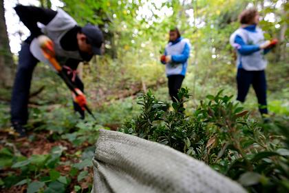 ВАдыгее отчитались ореализации нацпроекта «Экология»