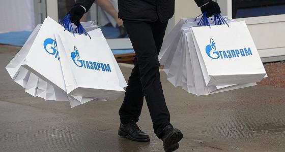 МЭР предлагает оптимизацию инвестпрограммы «Газпрома»