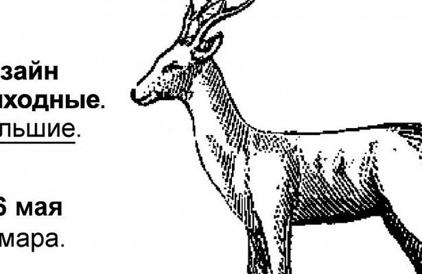 Графика ииллюстрации: вСамаре пройдут большие дизайн— выходные