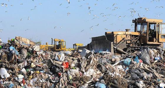 Путин рассказал о мерах борьбы со свалками и загрязнением водоемов