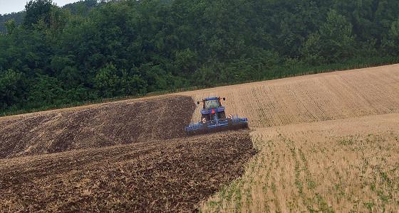 Динамика урожая, урожайности и посевных площадей зерновых культур в России