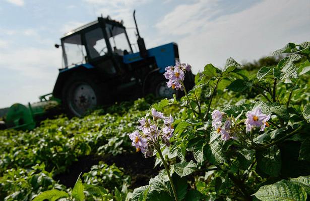Сельский отдых, илиКакнемецкие туристы русскому мужику огород перекопали