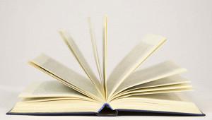 ВФРГвыпустили «Базовую Библию» длязумеров