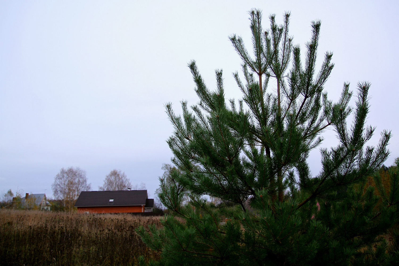 Деревня Орлово, в которой находится студия Xuman Records, расположена в 30 километрах от Москвы