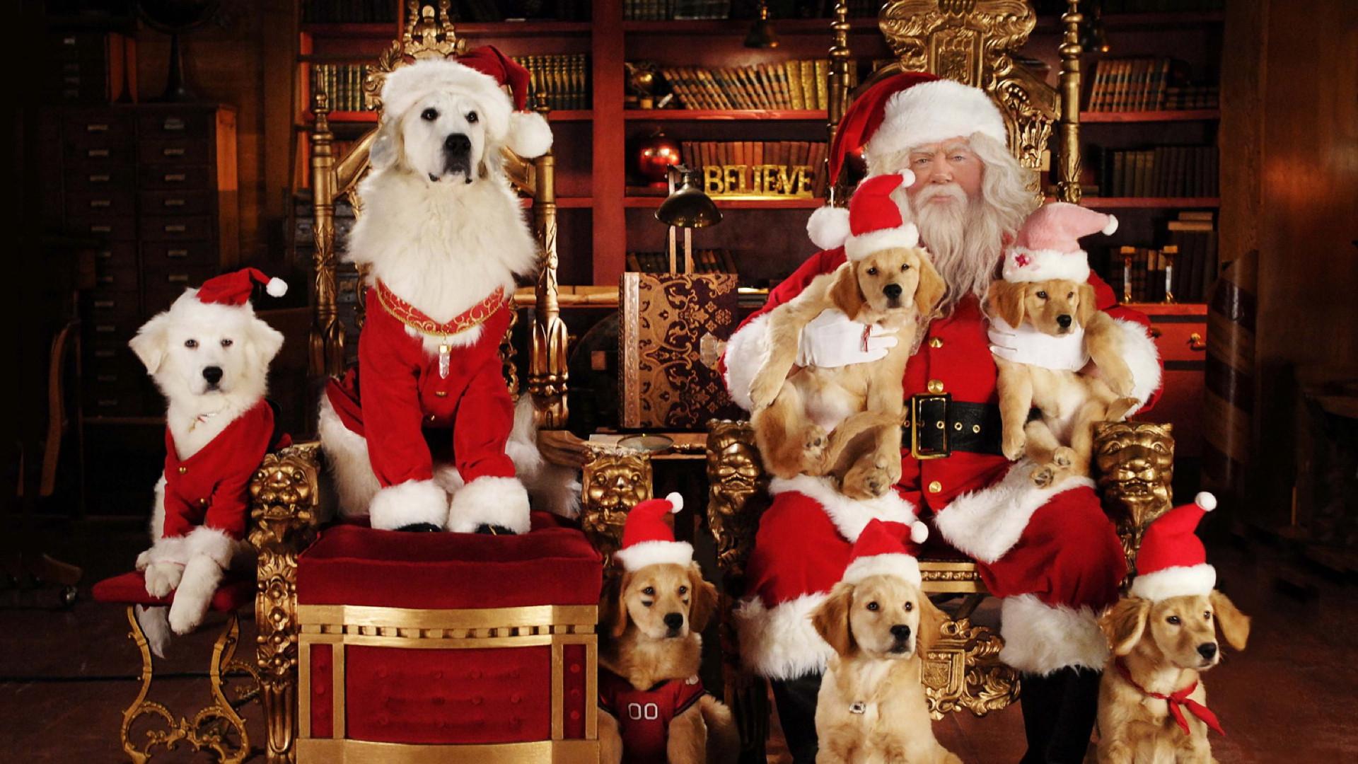 Рождественская пятерка смотреть фото