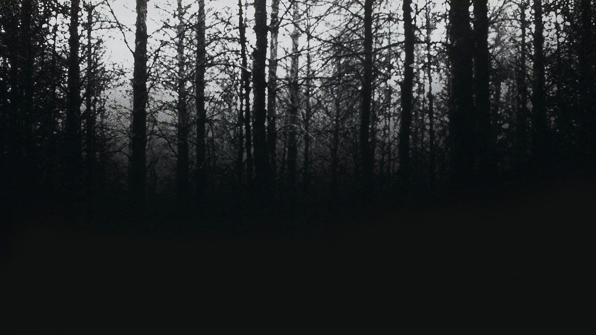 Ведьма из Блэр: Курсовая с того света смотреть фото