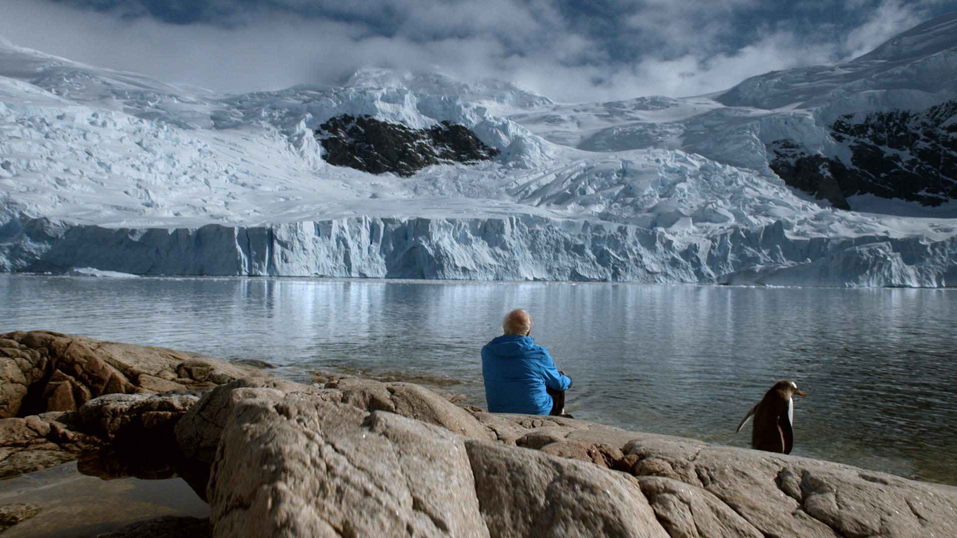 Лед и небо смотреть фото