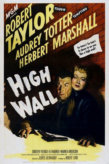 Постер Высокая стена