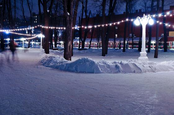 Сад эрмитаж зимой фото москва