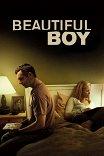 Хороший мальчик / Beautiful Boy