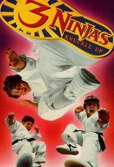 Постер Три ниндзя: костяшки вверх