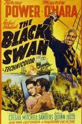 Постер Черный лебедь