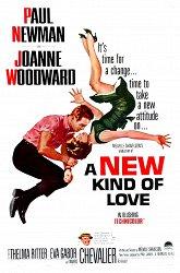Постер Новый вид любви