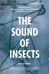 Постер Звук насекомых: Дневник мумии