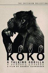 Постер Коко, говорящая горилла