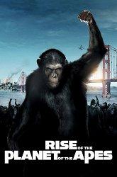 Постер Восстание планеты обезьян