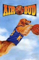 Постер Король воздуха