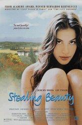 Постер Ускользающая красота