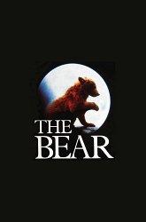Постер Медведь